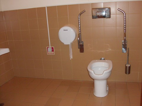 Photography of the accessible bathroom in Campo Alegre Theatre